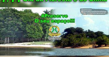 7 de Novembro Dia da Floresta e do Clima!!!